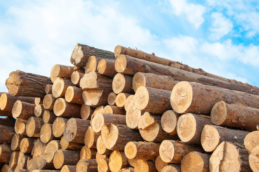 pile of timber